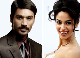 Dhanush and Mallika crowned PETA's hottest vegetarians