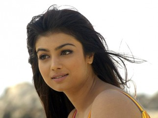Movie Still From The Film Kya Love Story Hai,Ayesha Takia Azmi
