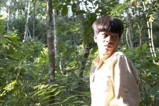 Movie Still From The Film The Forest