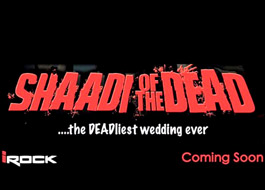 Rock The Shaadi on track confirms producer