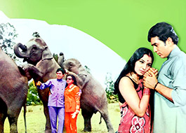 Haathi Mere Saathi to be remade with contemporary twist