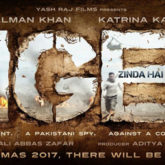 First Look Of The Movie Tiger Zinda Hai