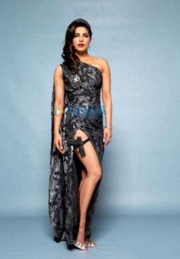 Celebrity Photos of Priyanka Chopra