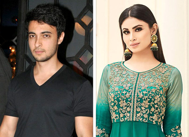 Salman Khan's brother-in-law not to be launched opposite Mouni Roy