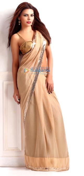 Celebrity Photos of Sherlyn Chopra