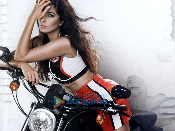 Celebrity Photo Of Katrina Kaif