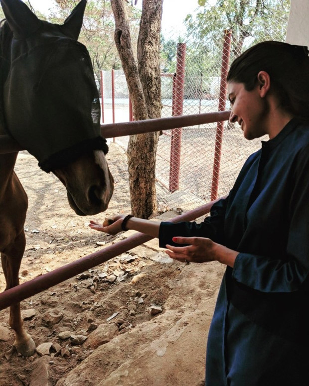 Animal lover Anushka Sharma bonds with 'handsome' horses and can't stop gushing